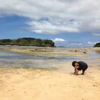 星砂の浜の次男