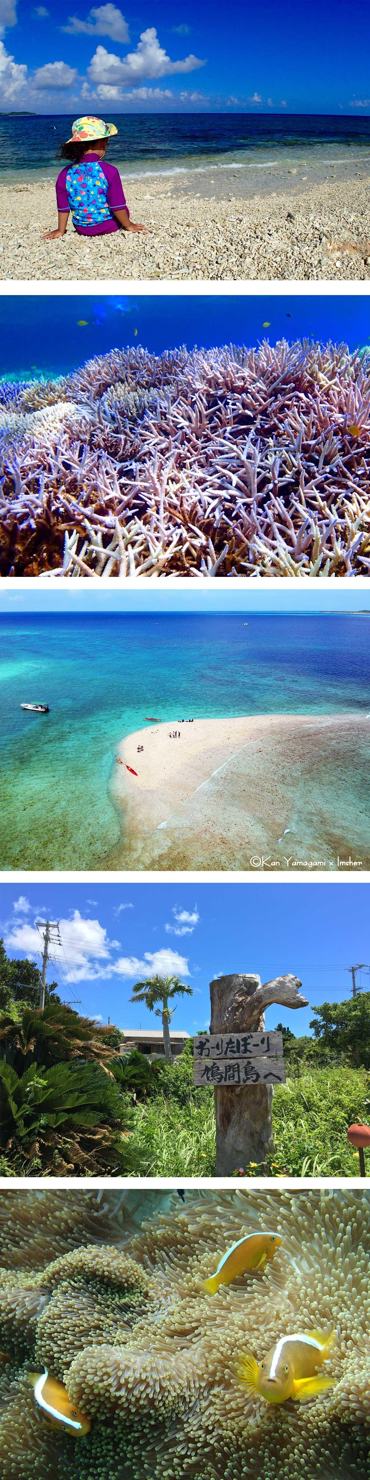 バラス島鳩間島