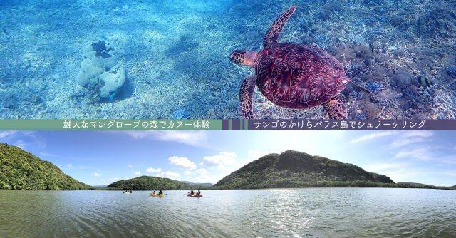 バラス島&浦内川カヌー